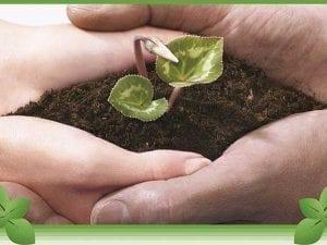 Soil Excavation for a Cleaner & Safer Environment